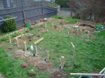 Placing the Posts for the raised vegetable garden beds. It was a wet July so the ground was mud