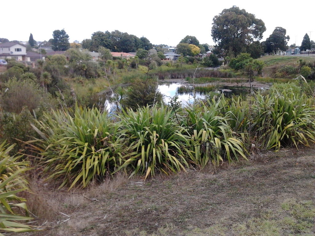 Looking south towards Papakura Town Centre and the storm water pond