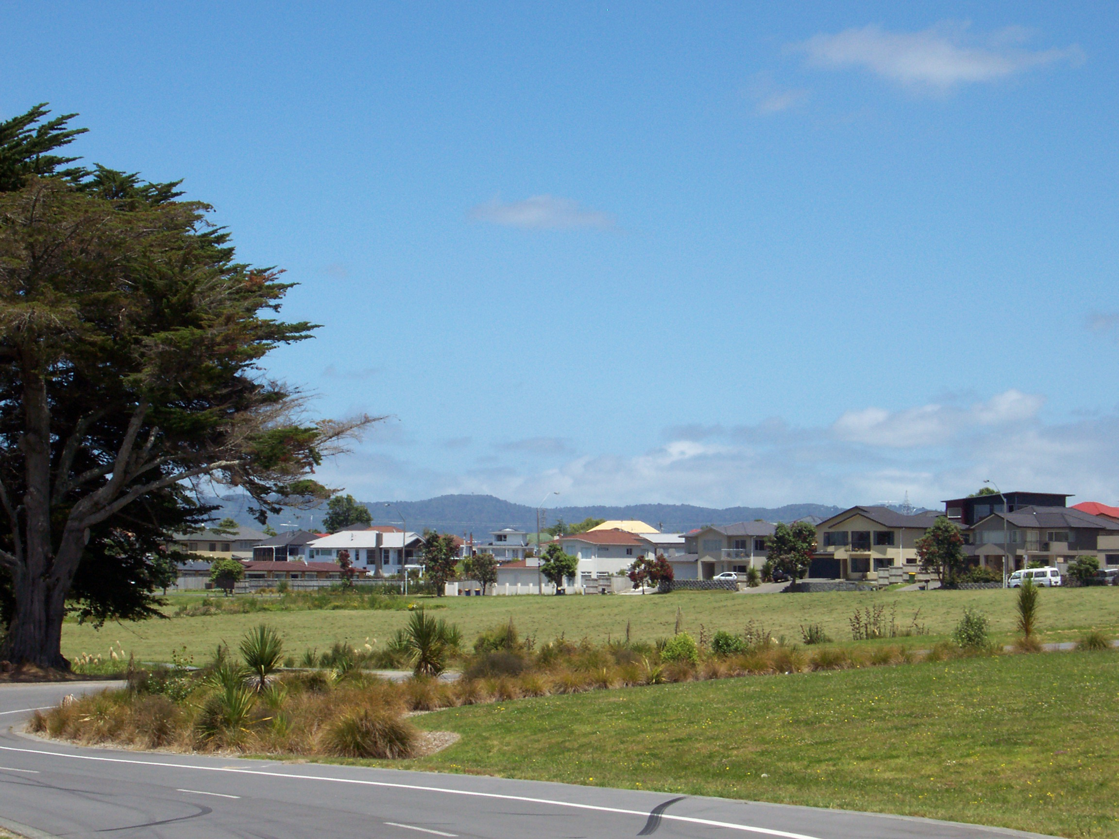 Environment and Community Committee Decision Digests Feb. 18: Waitakere Ranges to Be Closed