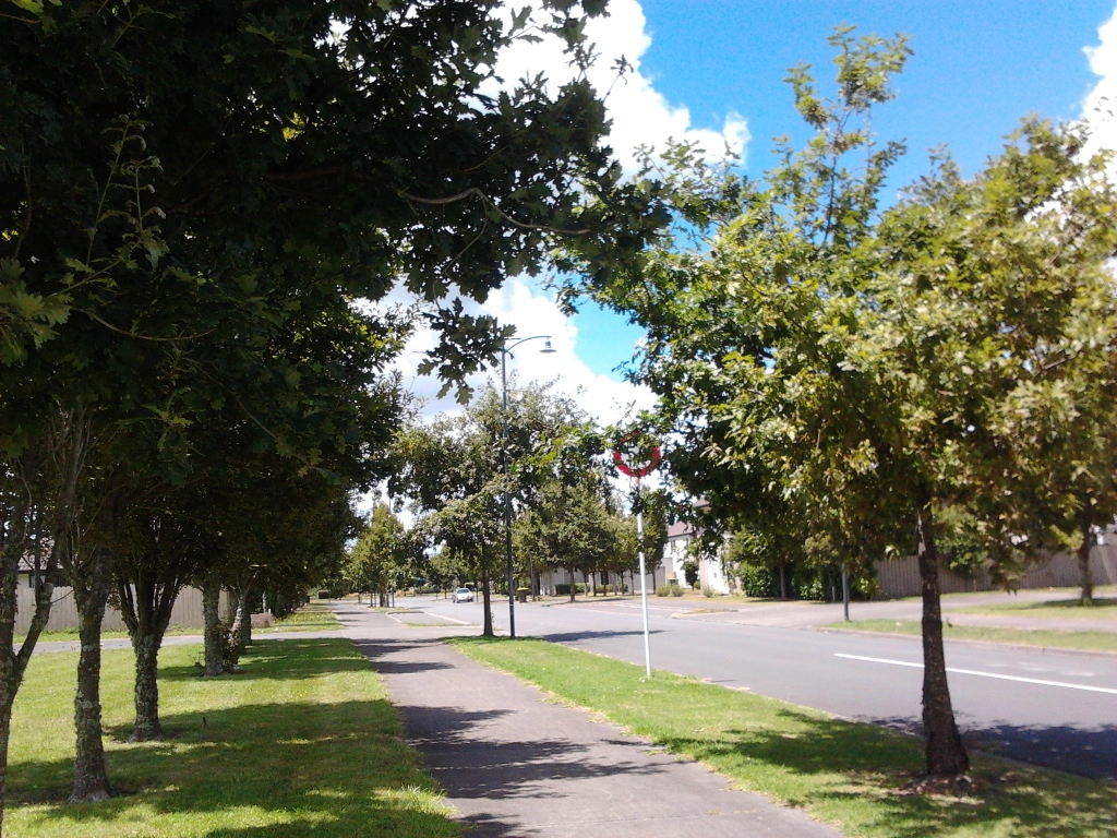 Side street of Porchester Road, Addison that could be dropped to 30km/h instead of 50km/h