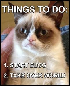 grumpy-cat-blog