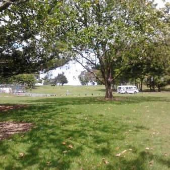 Hayman Park