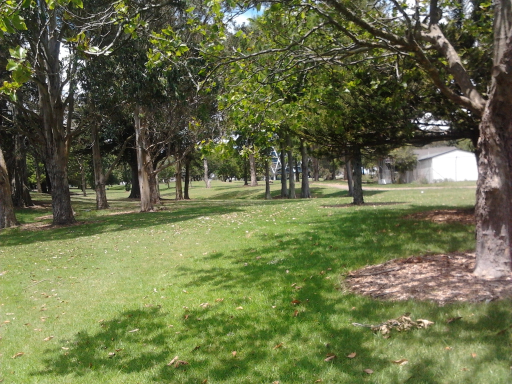 Hayman Park - under utilised potential in the heart of Manukau City Centre