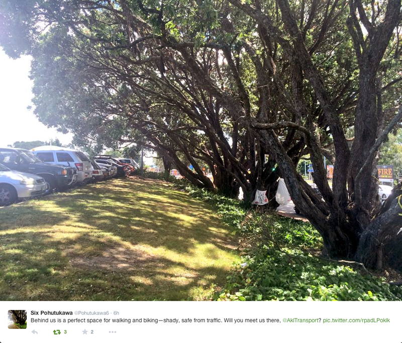 The Pohutukawa's under threat from AT