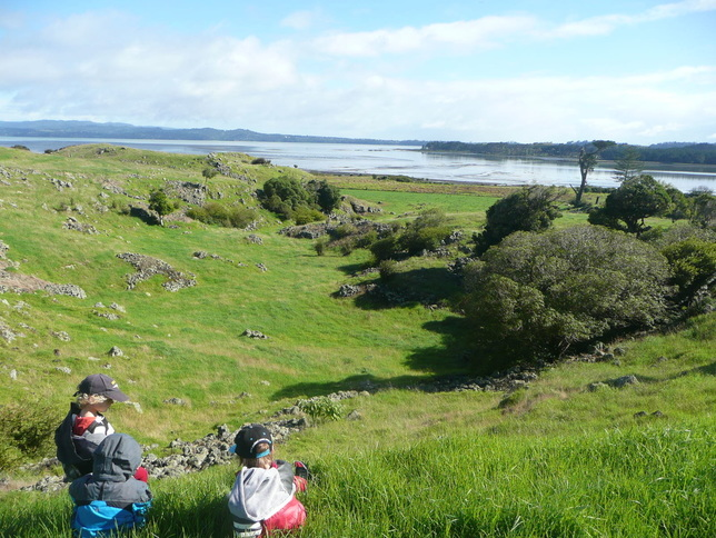 Looking towards the Ihumatao Stonefields
